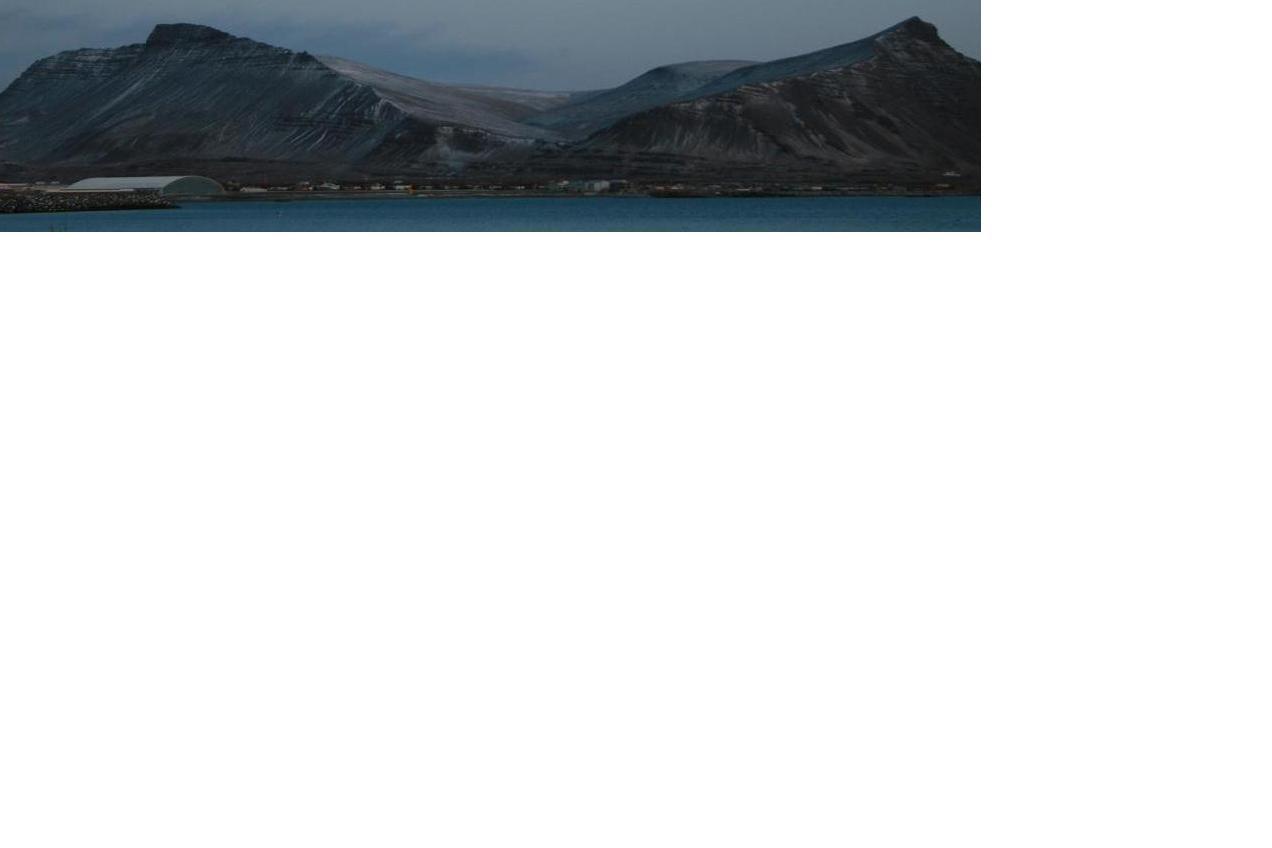Haraldur Bjarnason - Hausmynd